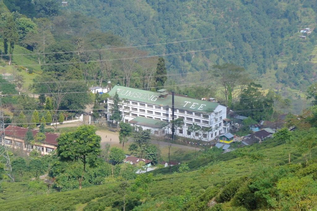 Darjeeling Broken Produktion