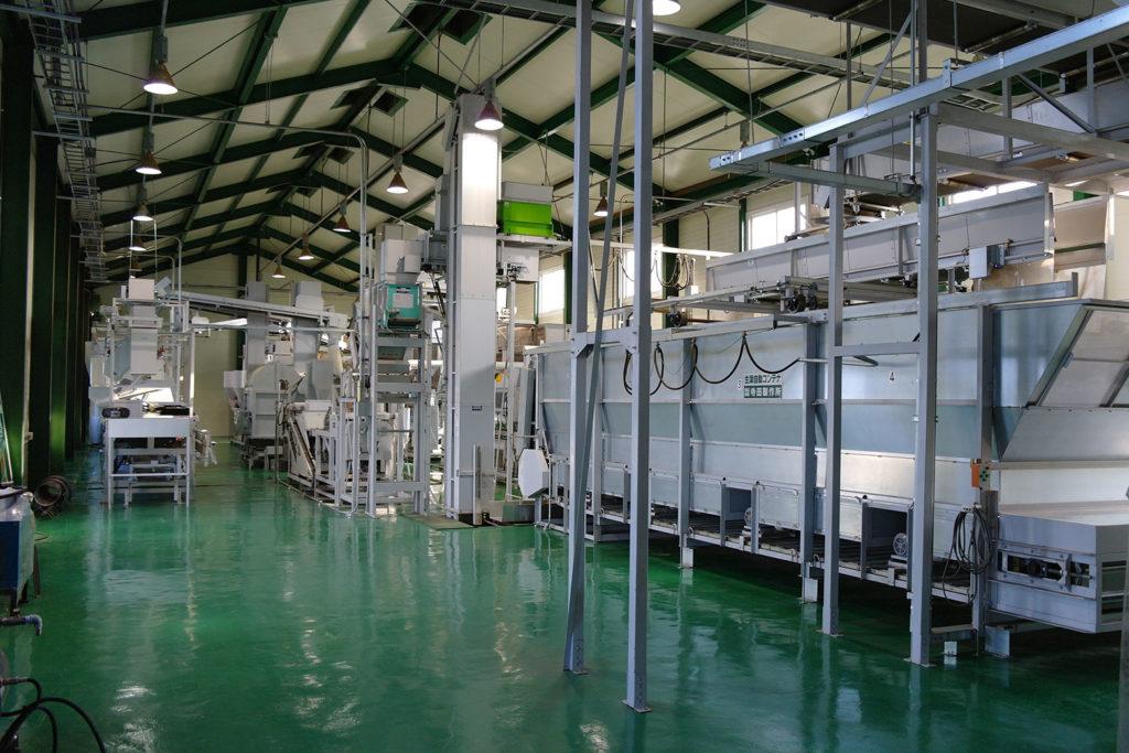Korea Tee-Produktionsanlage